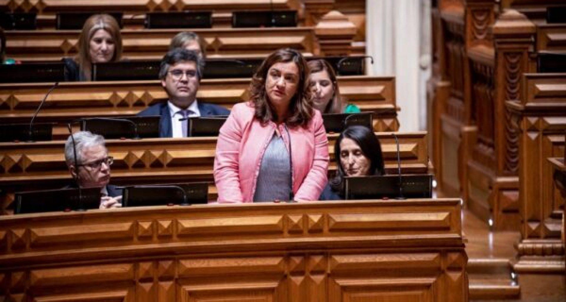 Carla Madureira (3)